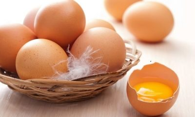 Đắp mặt nạ trứng gà sao cho hiệu quả là băn khoăn của nhiều chị em