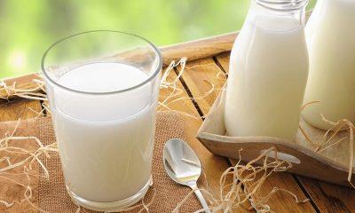Cách rửa mặt bắng sữa tươi không đường