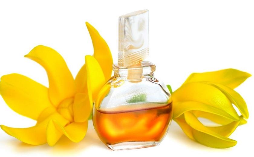 Tinh dầu ngọc lan tây ylang ylang