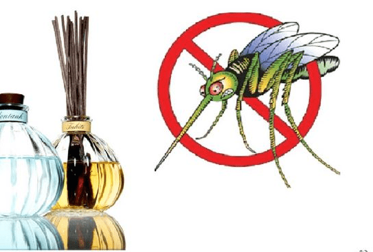tinh dầu đuổi muỗi